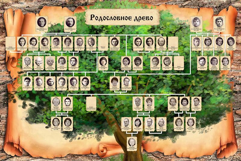 Как можно оформить фамильное (семейное) дерево своими 66